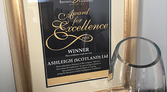 Business Excellence Award 2016 – 'Service – more than 25 employees'